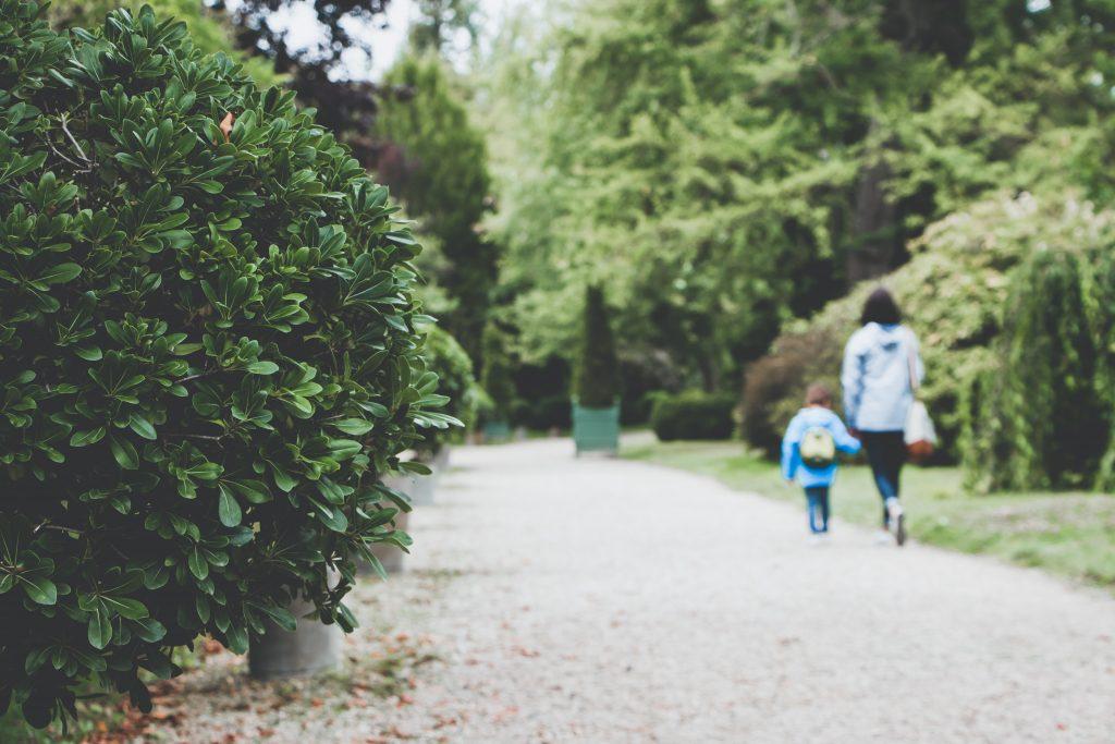 Scrisoare pentru părinți – Furtuna emoțională și grădinița